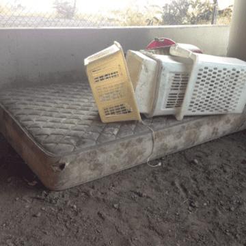 San Jose đấu tranh để đáp ứng tăng đột biến trong các yêu cầu dọn rác