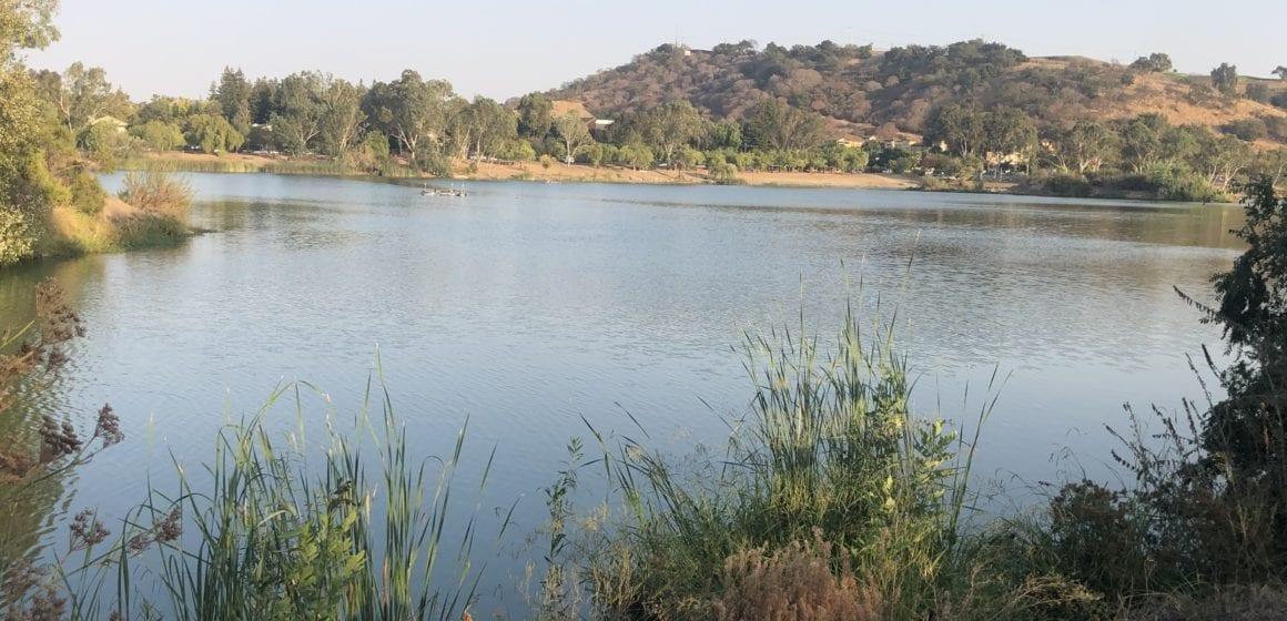Irvin: Lo que Valley Water no quiere que sepa sobre la Medida S