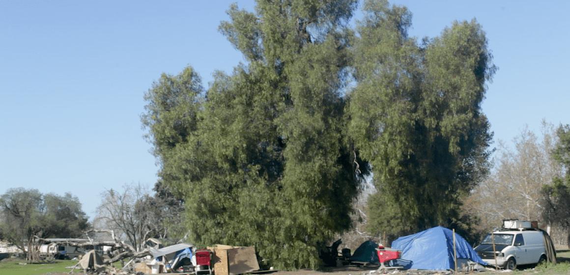 San Jose to transform park alongside homeless encampments