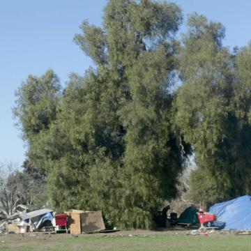 San José transformará parque junto a campamentos para personas sin hogar
