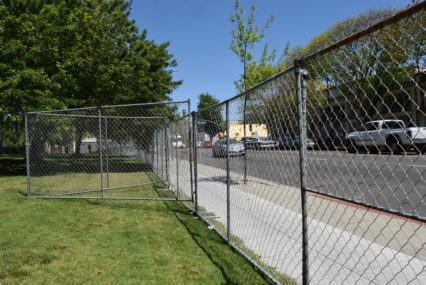 Why does San Jose close Roosevelt Park during Cinco de Mayo?