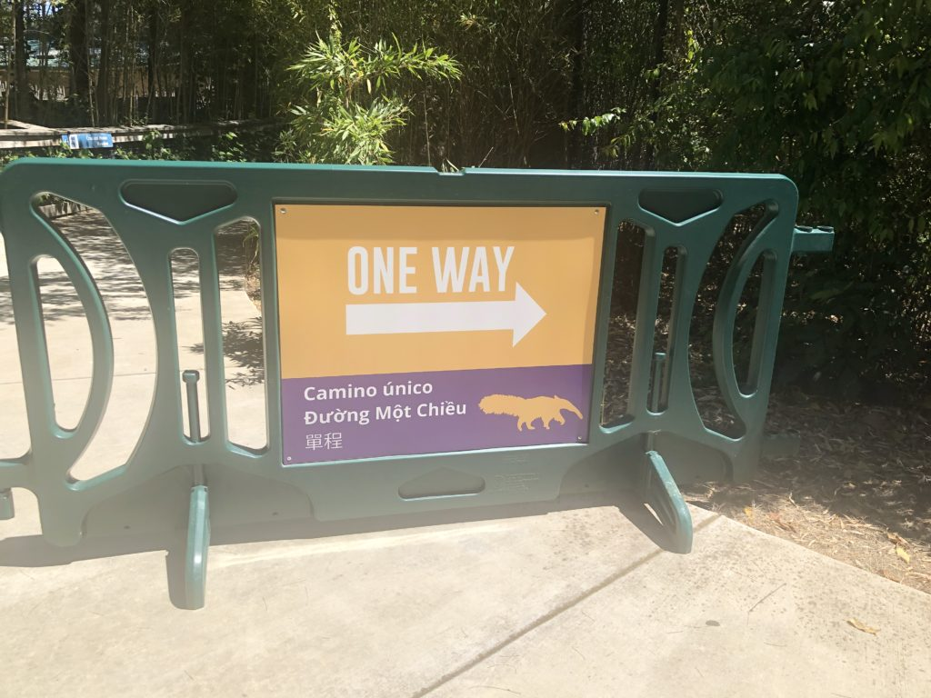 In the current stage of reopening, visitors can walk through the zoo via a one-way path. Photo by Patricia Wei.